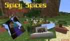 rp_Spicy-Spices-Mod.jpg